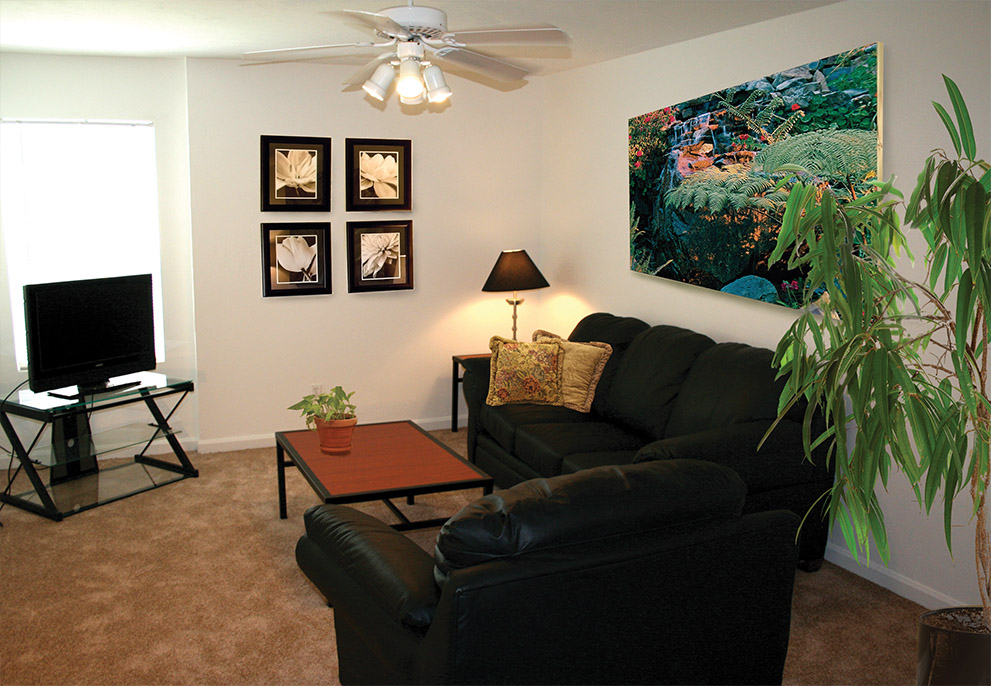 Pet Friendly Apartments In Tallahassee Near Fsu